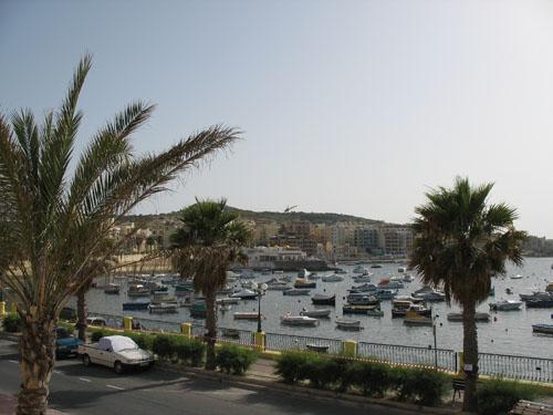 Palmen, Meer & ein Hafen